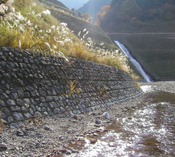 自然石埋込みタイプ